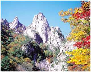 韩国五大赏枫佳境