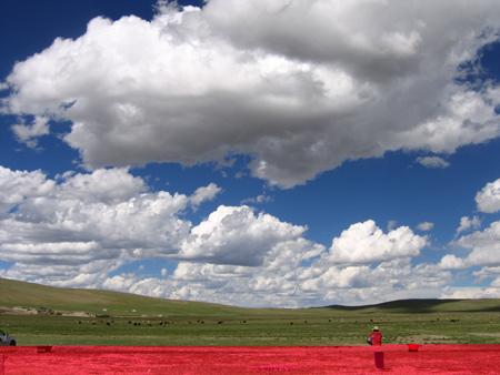 图文:那曲草原