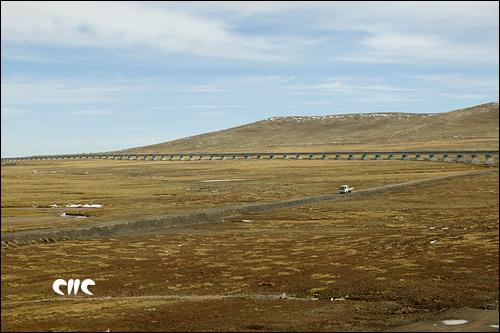 青藏铁路穿越草原