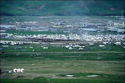 赛马节时草原变成帐篷城