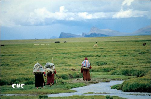 到纳木错朝拜的僧人_天湖——纳木错_乐途旅游网