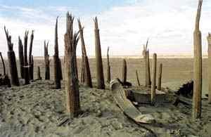科技时代_探险圣地评选:小河墓地