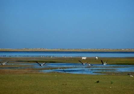 科技时代_探险圣地评选:青海湖-黄河的曾经伙伴
