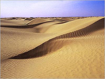科技时代_探险圣地评选:塔克拉玛干沙漠—叩问生命的地方