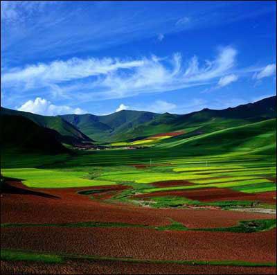 甘南三千里一步一风景