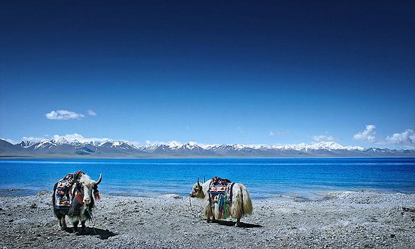 臧秘·神川之天湖(多图)天湖风光