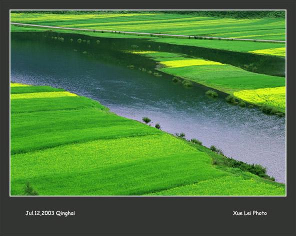 怀念青海 青海湖