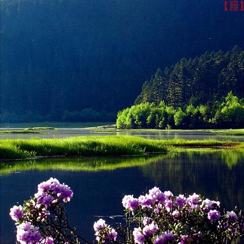 春到属都湖