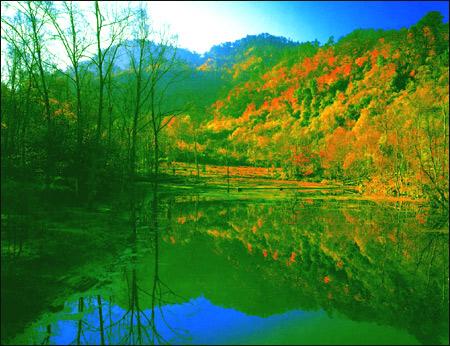 喇叭河旅游风景区