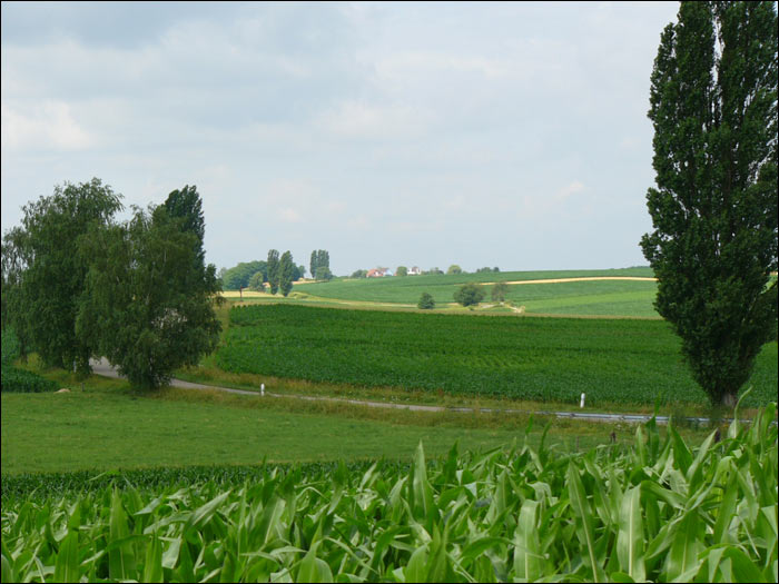 法国乡村田园风光-1