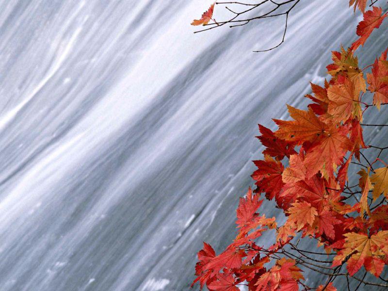 秋天风光-7