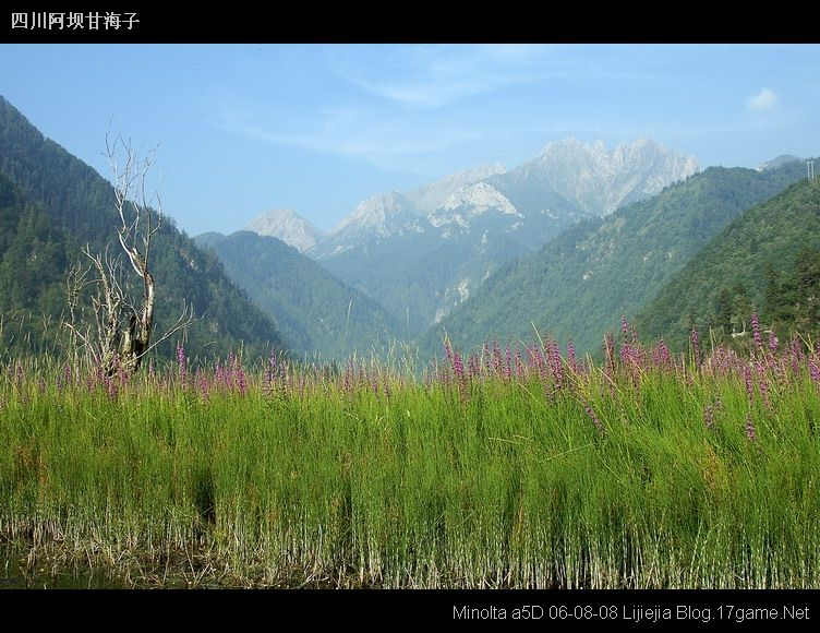 图片:甘海子风景区
