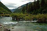 图片:九寨沟黄龙之旅 树正群海