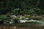 图片:九寨沟黄龙之旅 盆景滩风光