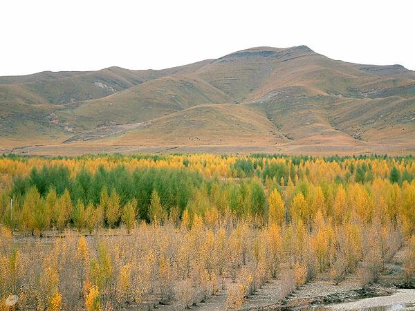 图片:稻城傍河