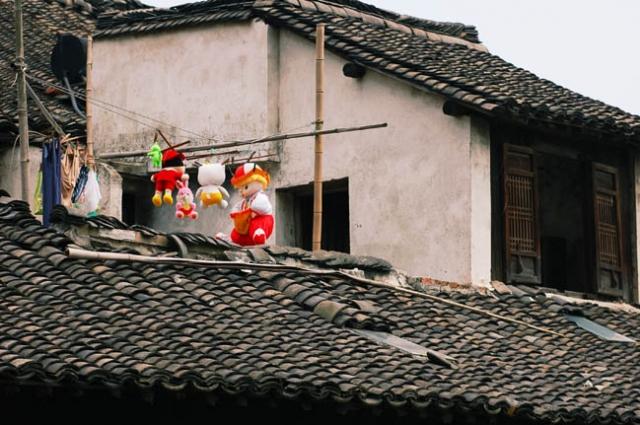 浙江乌镇图片