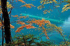 图片:九寨沟风景区