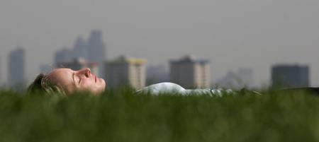 图文:英国伦敦一名妇女躺在樱草花地中