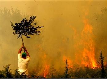 图文:西班牙村民尽力扑救森林大火