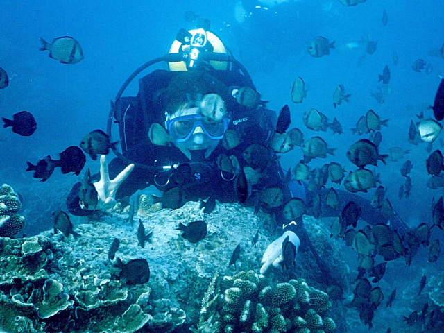 三亚蜈支洲岛潜水