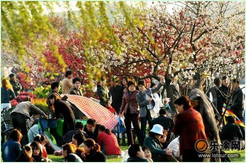 白堤上坐满了赏花的游客_