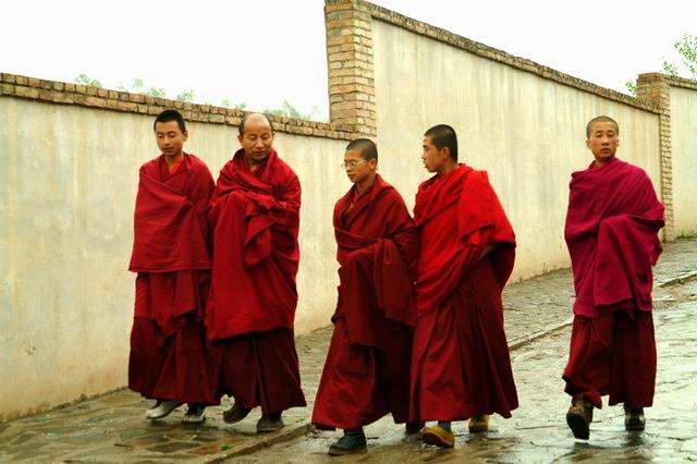 图片:塔尔寺喇嘛