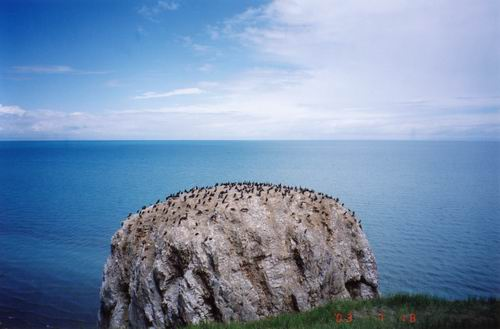 青海湖的湖中共有五座小岛,蛋岛,海西皮,海心山,沙岛和三块石岛.