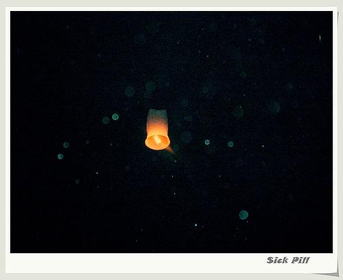 普吉岛图片