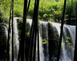 图片:贵州赤水