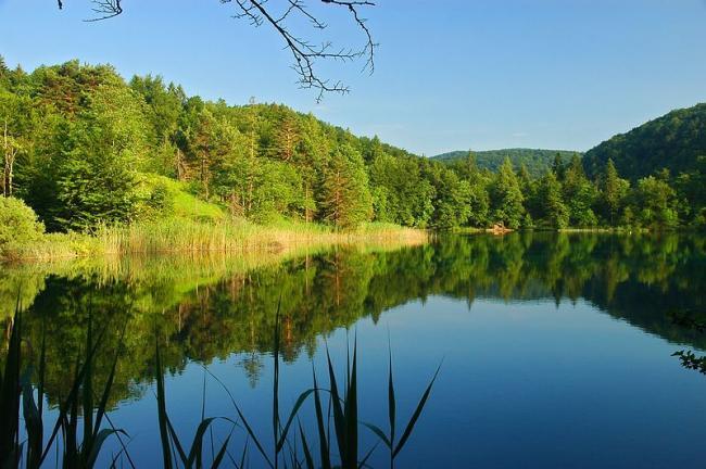 宁静的自然景色(1)