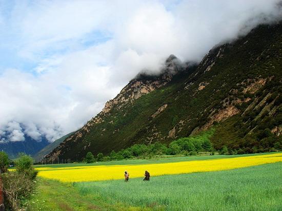 西藏风光图片(10)