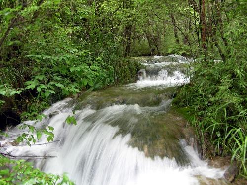 九寨沟图片-潺潺的水流