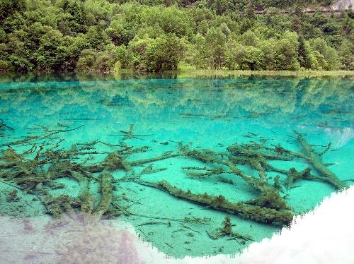 九寨沟图片-清澈透明的湖水