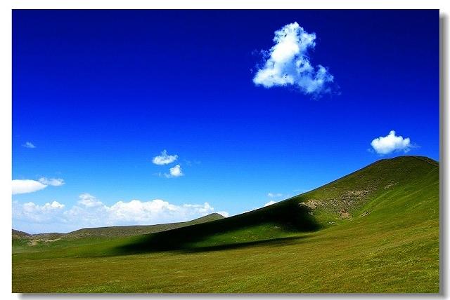 四川红原大草原图片