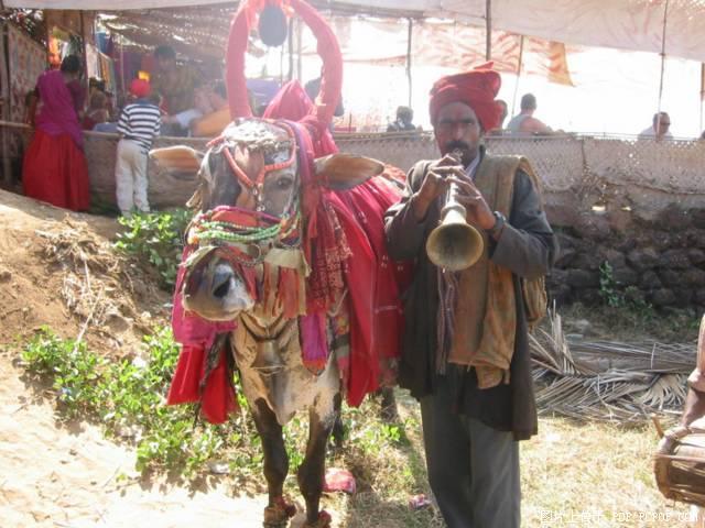 印度风光图片