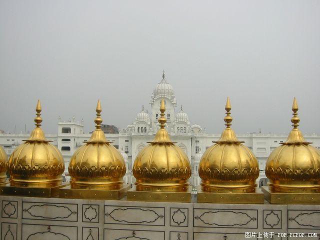 印度黄金庙图片