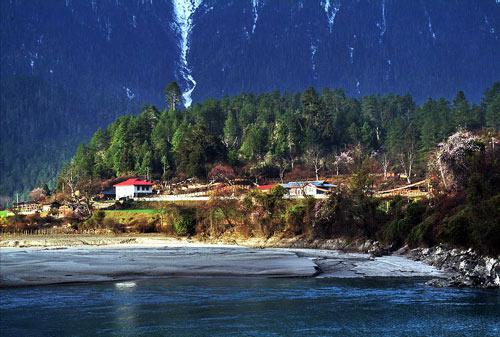 图片:西藏波密