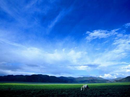 西藏风光图片:雪域江南林芝