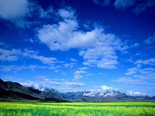 西藏林芝风景图片
