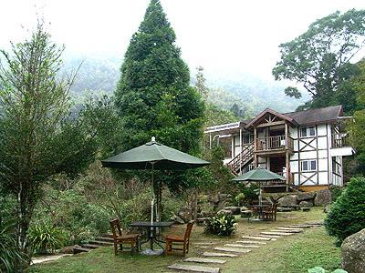 台湾旅游景点图片:溪头园区