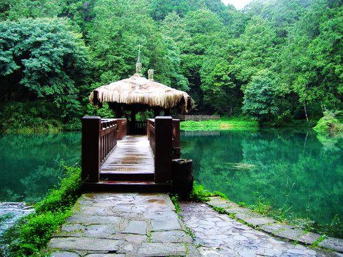 台湾旅游景点图片:嘉义阿里山