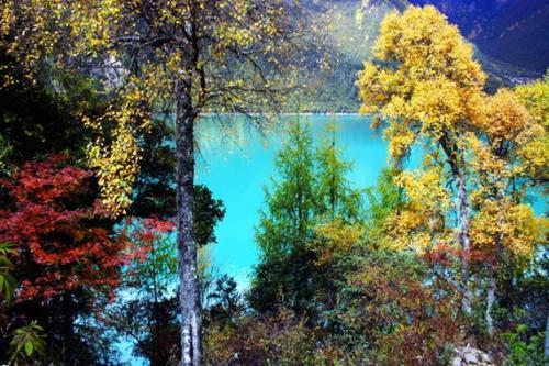 西藏林芝秋季风光-巴松错风景区