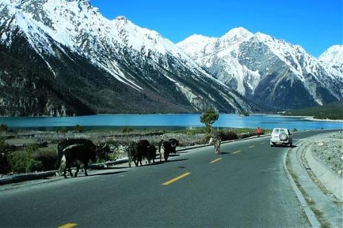川藏线秋季风光-然乌湖