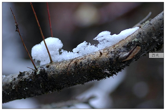 九寨沟冬景风光图片