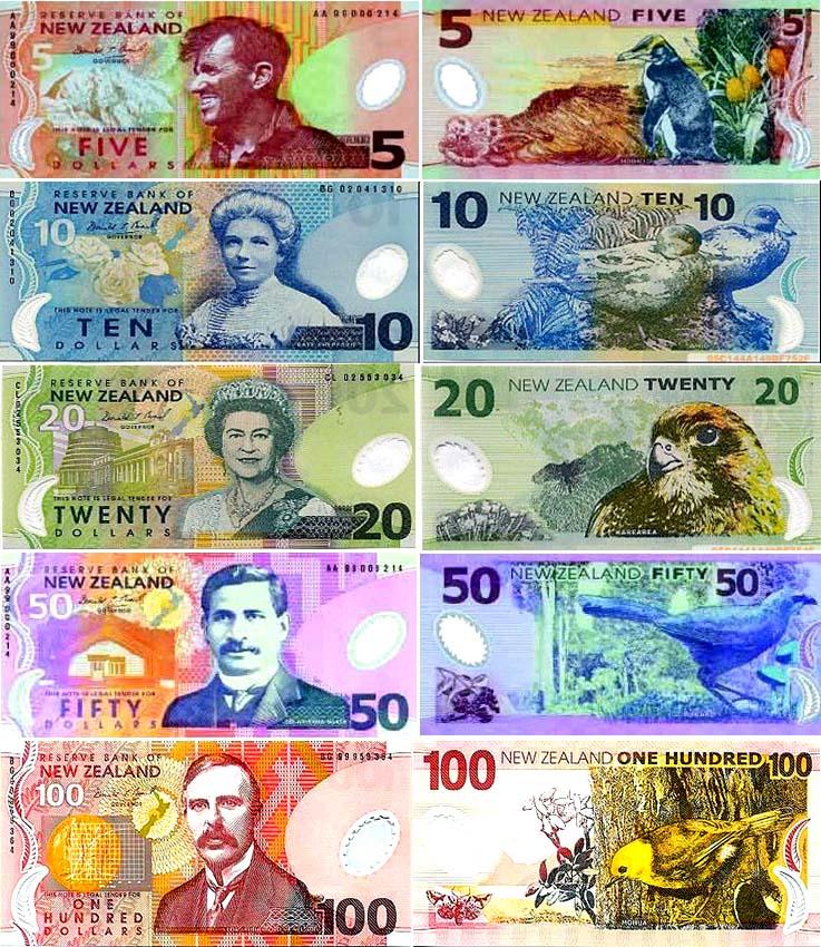新西兰货币-新西兰元图片