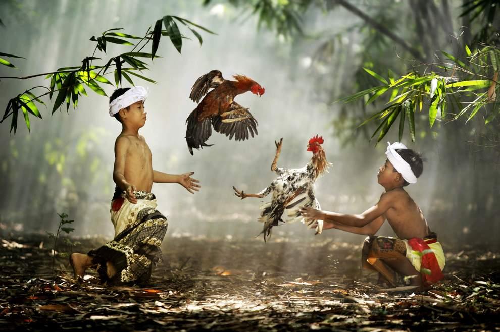 图片:2010年美国国家地理摄影大赛作品欣赏-印度尼西亚西爪哇的Suradita村