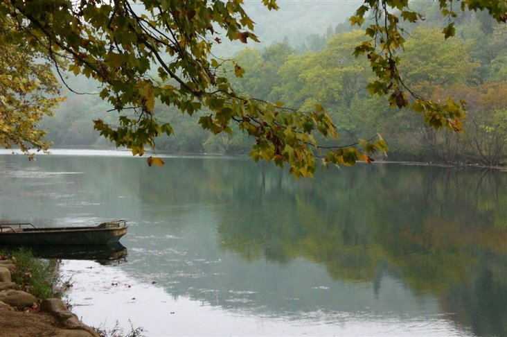 图片:花溪