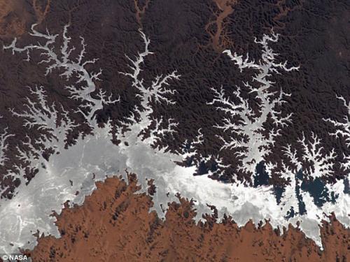 图片:2005年,从国际空间站拍摄埃及纳塞尔湖