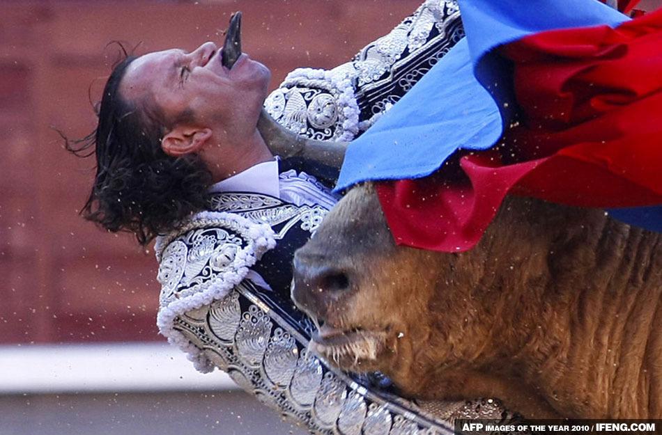 图片:法新社公布2010年度最佳图片 斗牛士被公牛角刺穿下颚