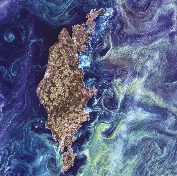 图片:艺术地球
